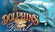 Жемчужина дельфинов