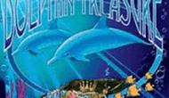 Сокровища Дельфинов