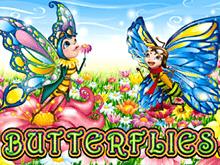 Бабочки – играйте онлайн с бонусом