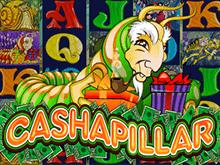 Денежная Гусеница - игровой автомат с бесплатными спинами