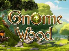 Лес Гномов - игровой автомат с выплатами от заведения